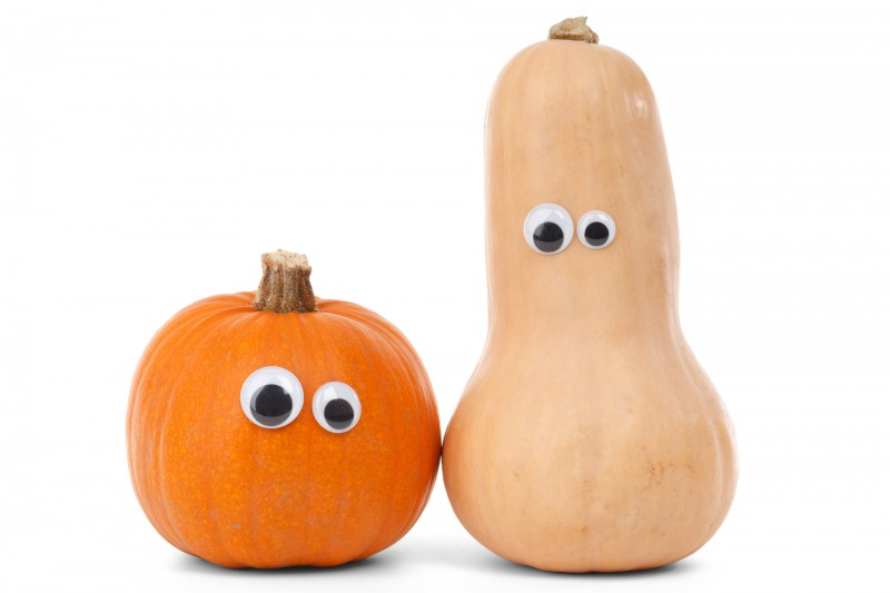 pumpkin-friends
